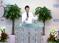 복음 전파의 3대 원칙